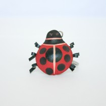 All Other Key Ladybug